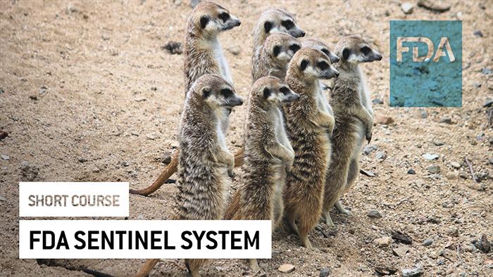 Eu2P Short Course: FDA Sentinel System